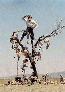 باغ سنگی - اثر پرویز کیمیاوی